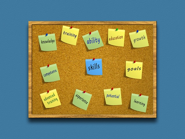 """Cork board with various coloured sticky notes pinned to it saying """"ability, knowledge, goals, skills etc"""""""