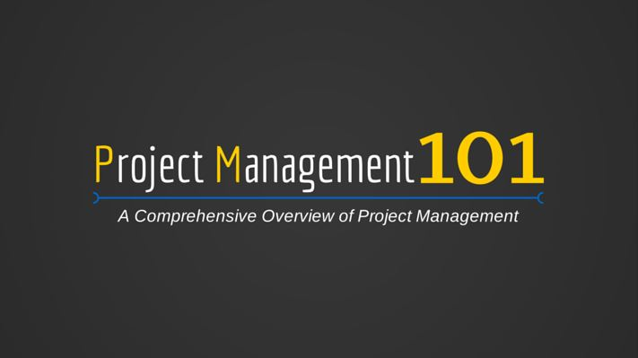 Project Management 101 logo