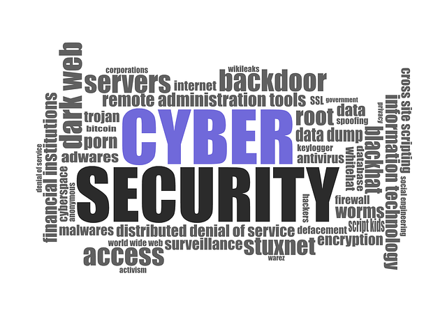 Word cloud featuring Cymber Security as the main heading in purple and black with smaller words such as Servers, Dark Web, Access etc. By typographyimages, featured on Pixabay